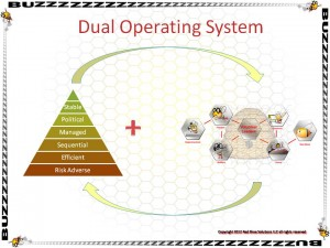Parallel Operating System