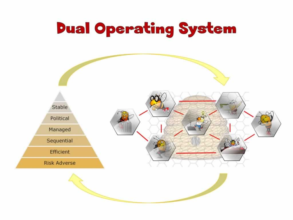 Dual Operating System