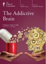 addictive brain